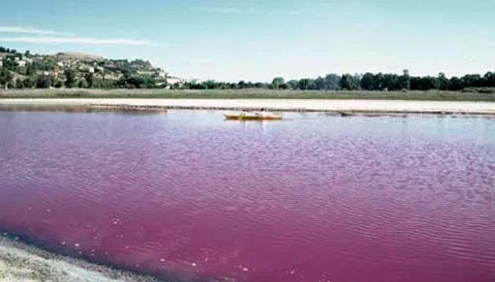 Pergusa lago di sangue